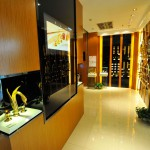 mestre luxury products in chendgu showroom (9)